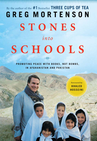 Stones into schools book cover
